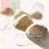 Postal Shells IV