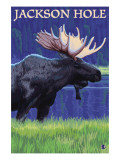 Jackson Hole  Wyoming - Moose at Night