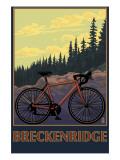 Breckenridge  Colorado - Mountain Bike