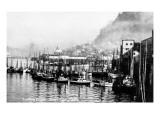 Ketchikan  Alaska - View of Trolling Boats in Harbor
