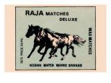 Raja Matches Deluxe
