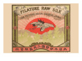 Filature Raw Silk