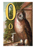 O For the Owl That Sees In the Dark