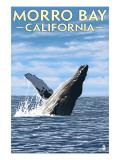 Morro Bay  CA - Humpback Whale