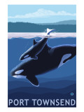 Port Townsend  WA - Orca &amp; Calf