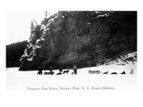 British Columbia  Canada - View of Trappers and Dog Teams on Muskwa River