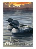 Lake Winnipesaukee  New Hampshire - Loons
