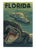 Florida - Alligators
