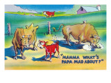 Comic Cartoon - Red Calf Asking Mamma Cow Why Papa Bull is Mad