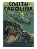 South Carolina - Alligators