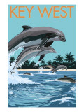 Key West  Florida - Dolphins Swimming