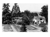 Santa Rosa  California - View of a Burbank Garden