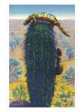 New Mexico - View of Gila Monsters on Cactus