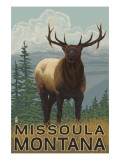 Missoula  Montana - Elk Scene