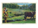 North Carolina - Cherokee Farmer with Ox-Drawn Plow