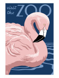 Flamingo - Visit the Zoo