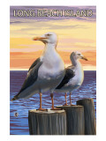 Sea Gulls - Long Beach Island  New Jersey