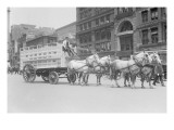 Borden Dairies Enter a Horse Drawn Wagon In the Work Horse Parade