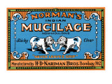 Norman's Indian Mucilage
