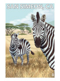 San Simeon  CA - Zebra Scene -