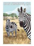 San Simeon  CA - Zebra Scene -