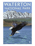 Waterton National Park  Canada - Eagle Fishing