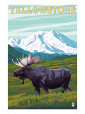 Yellowstone Nat'l Park - Moose & Mountain