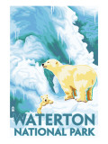 Waterton National Park  Canada - Polar Bear &amp; Cub