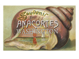 Anacortes  Washington - Shells & Sailboat Souvenir