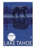 Bear at Night - Lake Tahoe  California