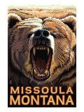 Missoula  Montana - Bear Roaring