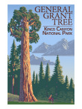 General Grant Tree - Kings Canyon National Park  California