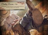 Cowboy Reason 4