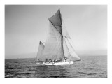 Yachts-Lipton Cup Races  Gwendolin  1914