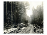 Lake Crescent Road  1919