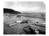 Neah Bay Low Tide  1914