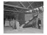 Warehouse Scene  Circa 1920s