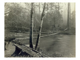 Suspension Bridge  Lake Crescent Road  1918