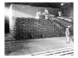 Utah-Idaho Sugar Company Warehouse in Bellingham  WA  1928