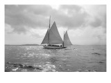 Sailing Boat
