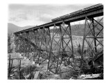 Bridge at Lester  WA  1915