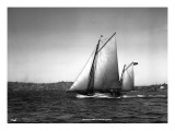 Sloop Sailboat Underway  Circa 1909