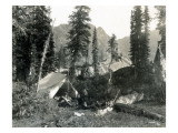 Camp at Logoon Lake  MT  1922