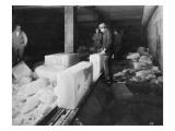 Ice on Chute  Yakima Valley  1915