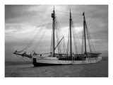 Schooner Great Bear  1916