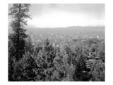 Spokane Through the Trees  1915