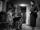 Micheline Presle: L'Amour D'Une Femme  1954