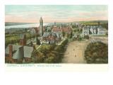 Cornell University  Ithaca  New York