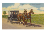 Amish in Carriage  Lancaster County  Pennsylvania