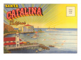 Postcard Folder  Santa Catalina  California